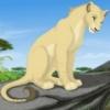 rachelkory11 - Lionzer player