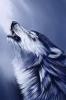 PrincessSilverwolf - Lionzer player